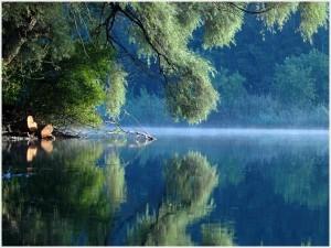Danube_le fleuve_Parc nat. Prairies Danubiennes